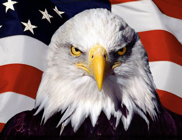 Гуд бай, Америка. Мифы о мощи. Мифы о величии ...