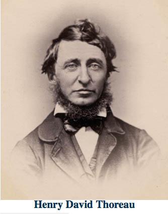 Live Deliberately: A Reflection On Thoreau
