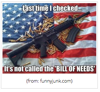 Second Amendment Bill of Rights